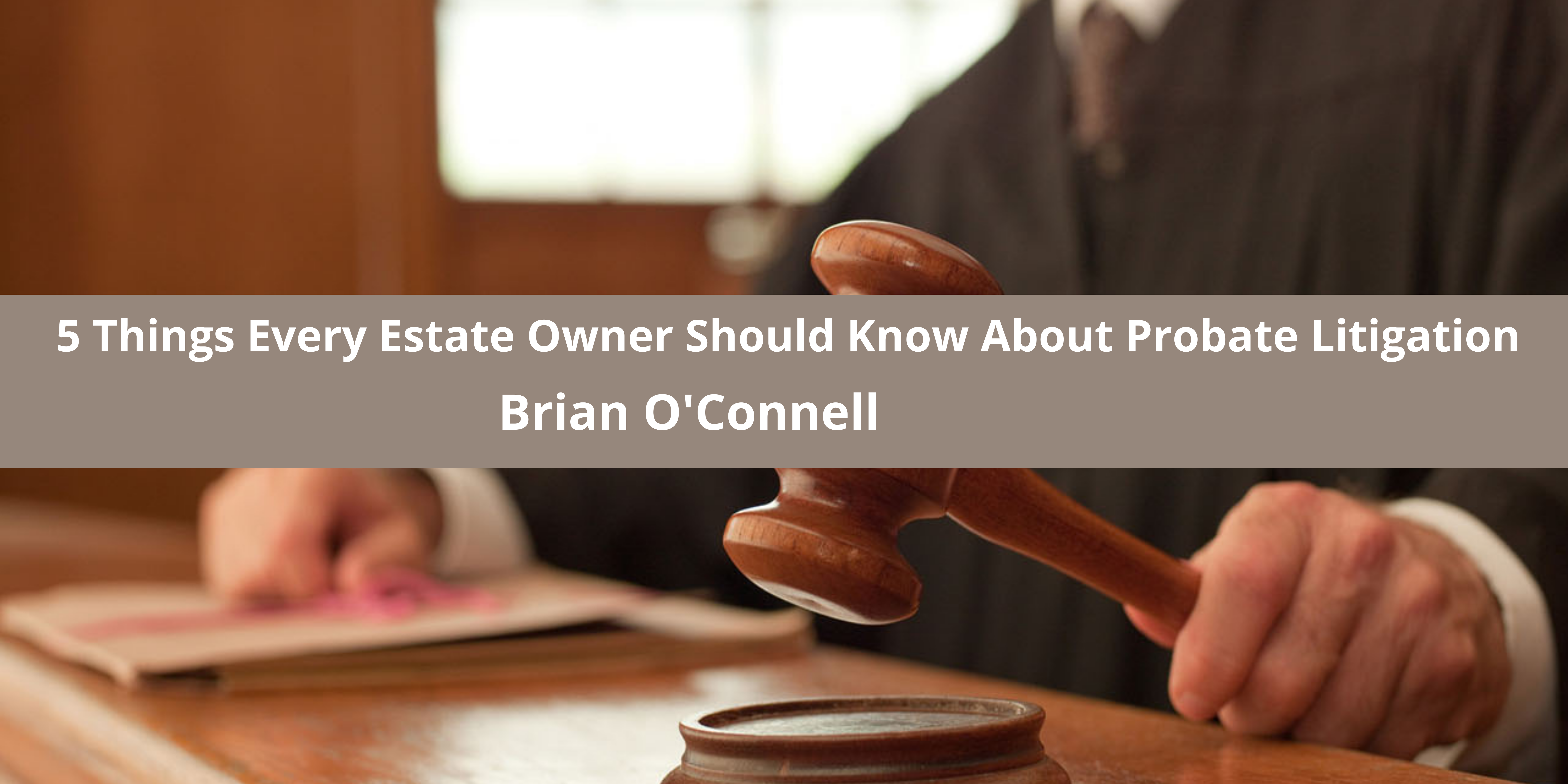 5 Things Every Estate Owner Should Know About Probate Litigation